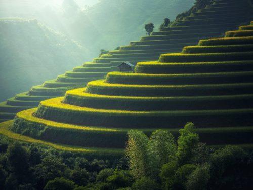 grassy-stepped-hills