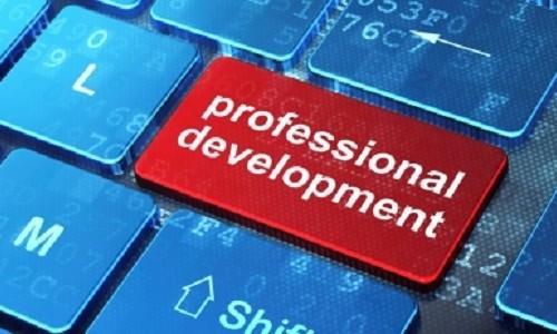 professional-development-500x300